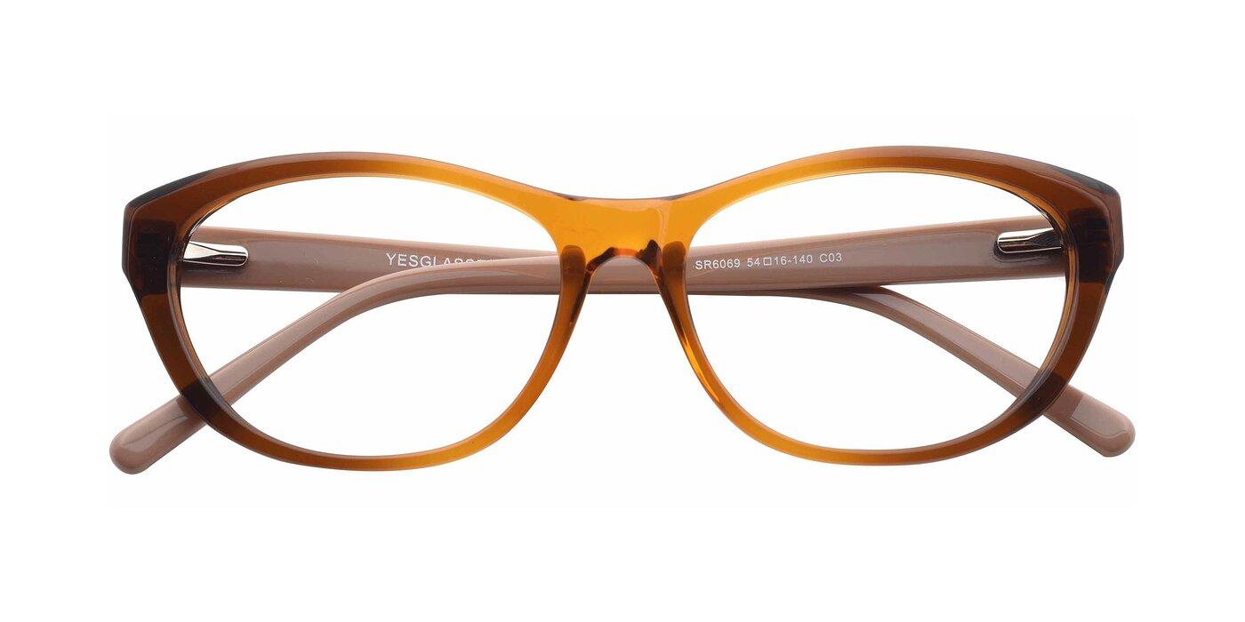 SR6069 - Transparent Gradient Brown Eyeglasses
