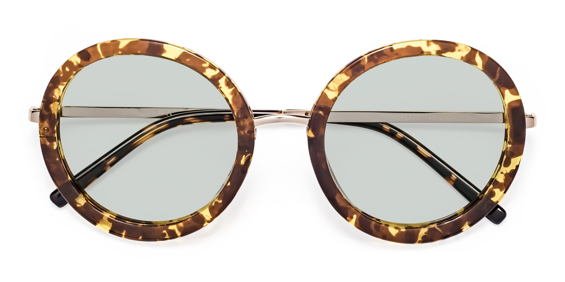 Folded Front of Bloom in Transparent Tortoise with Light Green Tinted Lenses