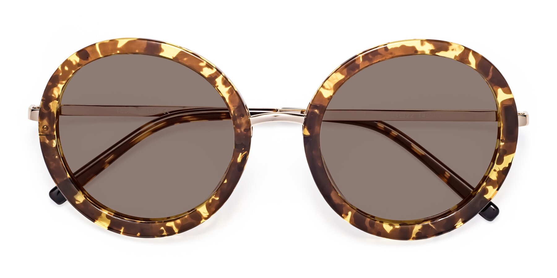 Folded Front of Bloom in Transparent Tortoise with Medium Brown Tinted Lenses