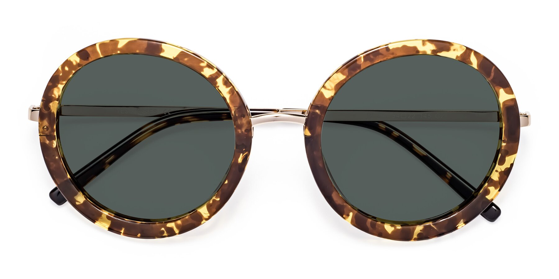 Folded Front of Bloom in Transparent Tortoise with Gray Polarized Lenses