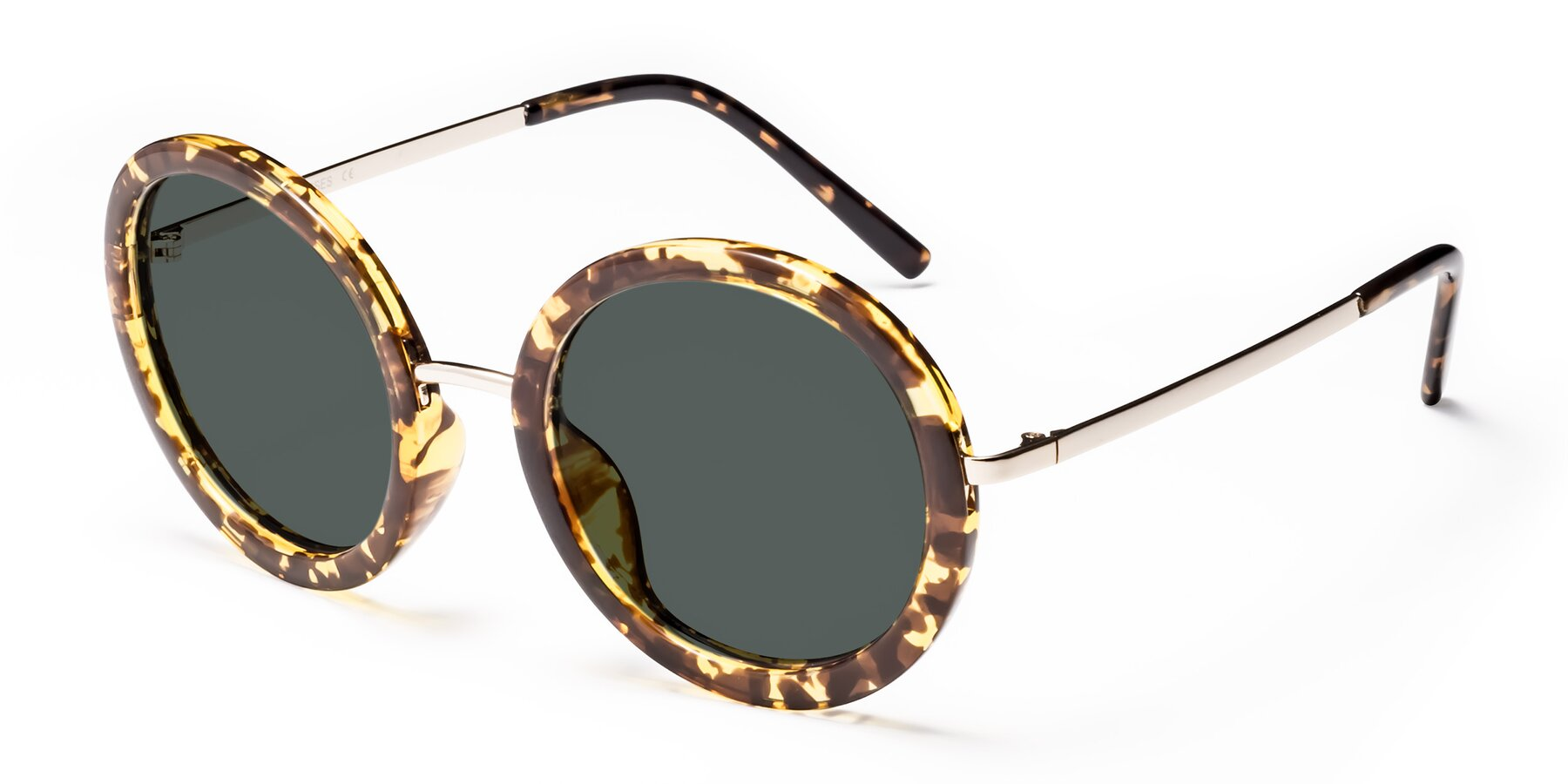 Angle of Bloom in Transparent Tortoise with Gray Polarized Lenses