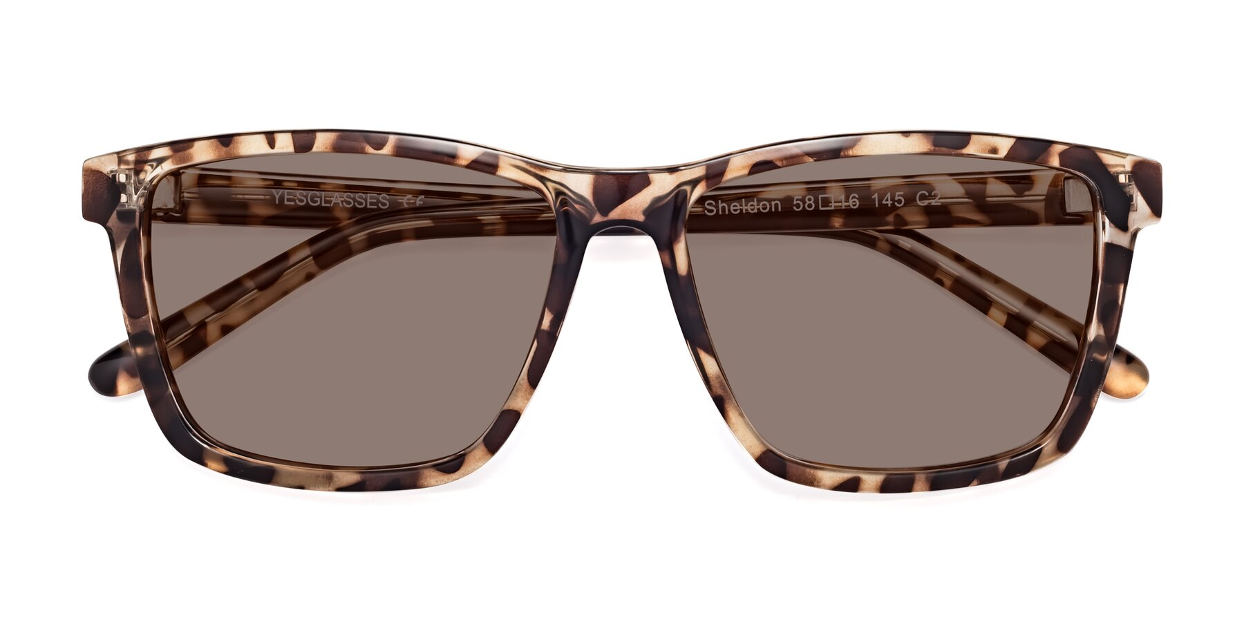 Folded Front of Sheldon in Tortoise with Medium Brown Tinted Lenses