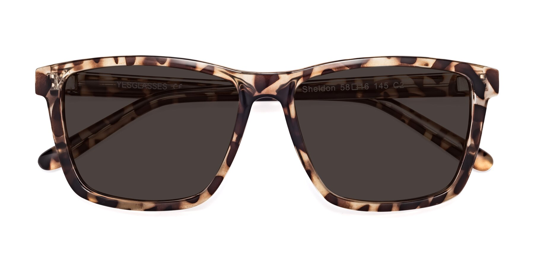Folded Front of Sheldon in Tortoise with Gray Tinted Lenses