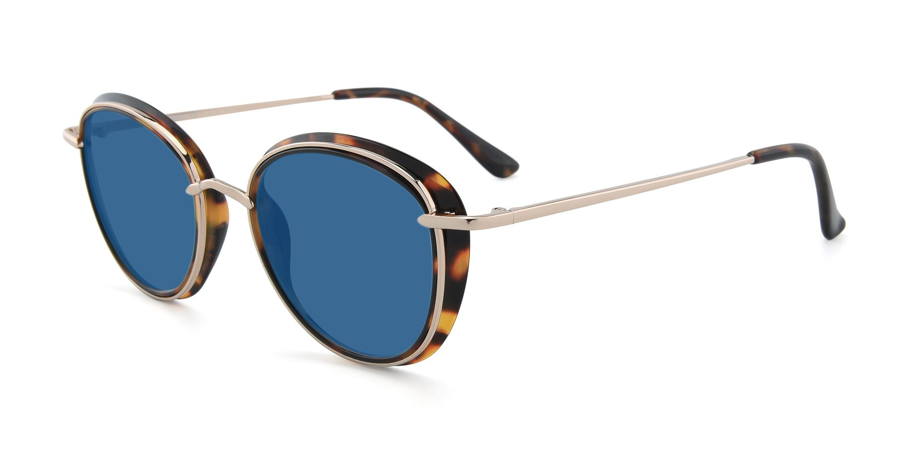 Angle of Cosmopolitan in Tortoise-Silver with Blue Tinted Lenses