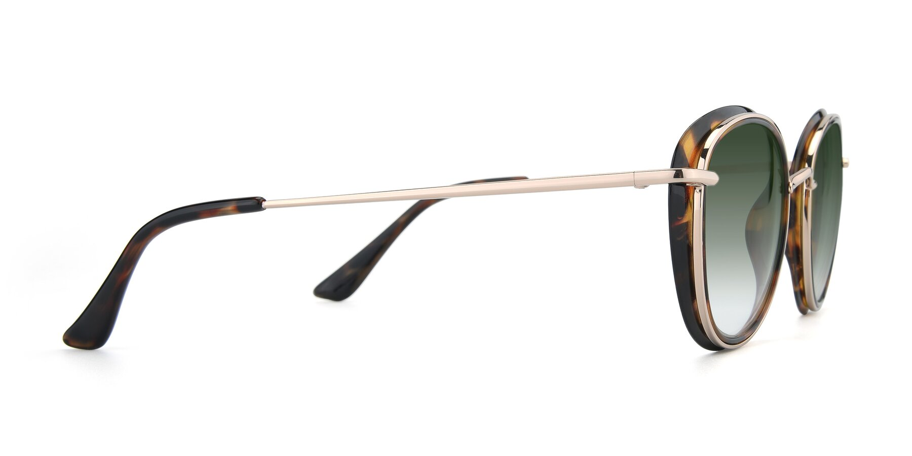 Side of Cosmopolitan in Tortoise-Silver with Green Gradient Lenses