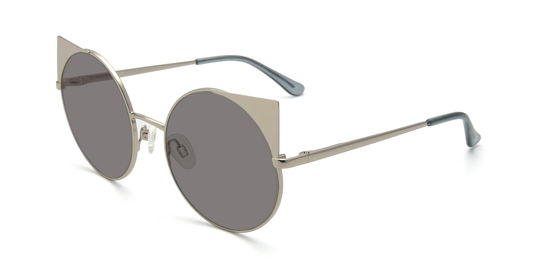 Angle of SSR1955 in Silver with Medium Gray Tinted Lenses