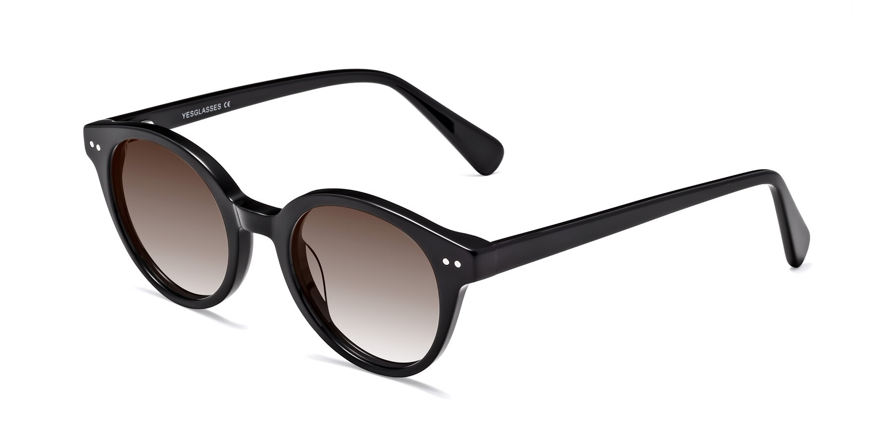 Angle of 17277 in Black with Brown Gradient Lenses