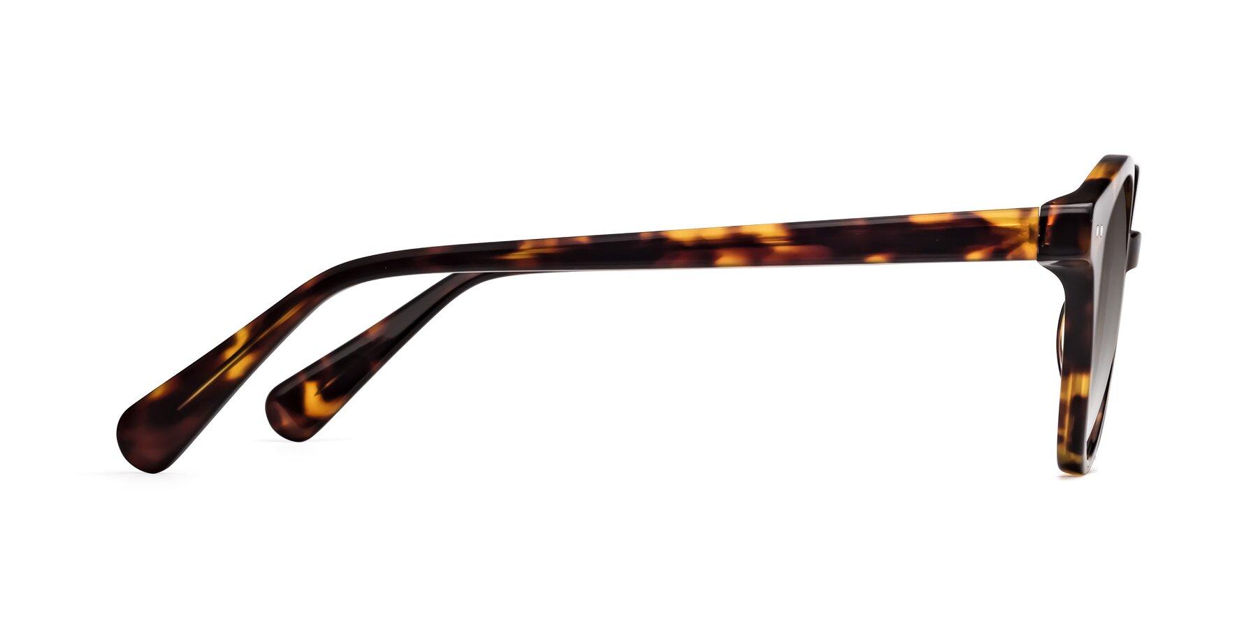 Side of 17277 in Tortoise with Gray Gradient Lenses