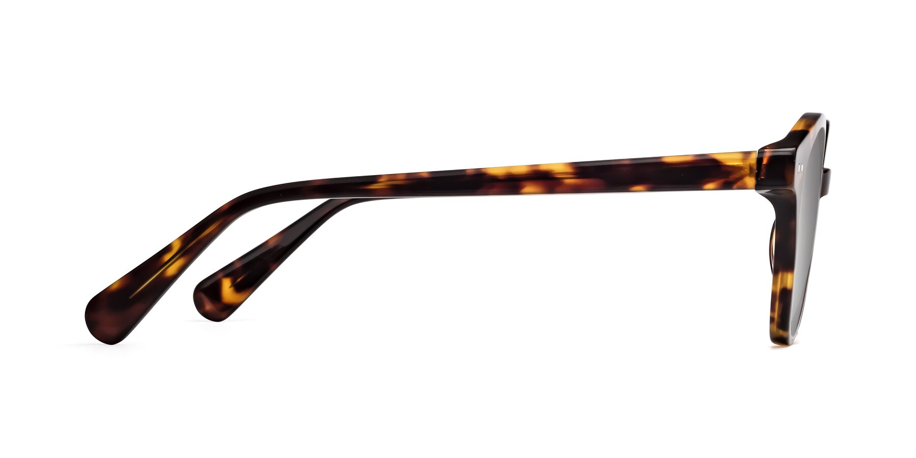 Side of 17277 in Tortoise with Silver Mirrored Lenses