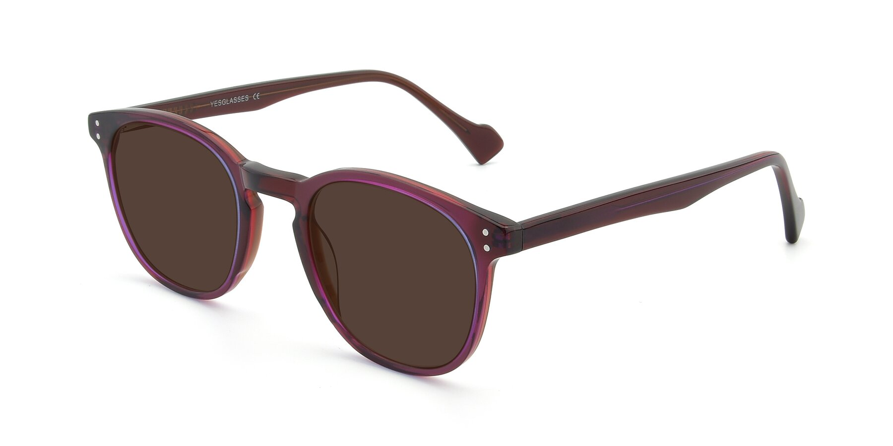 Angle of 17293 in Violet with Brown Tinted Lenses