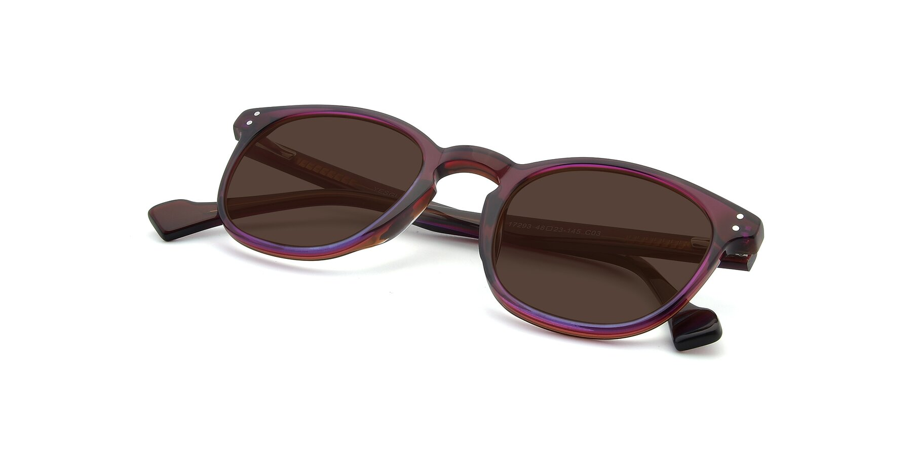 View of 17293 in Violet with Brown Tinted Lenses
