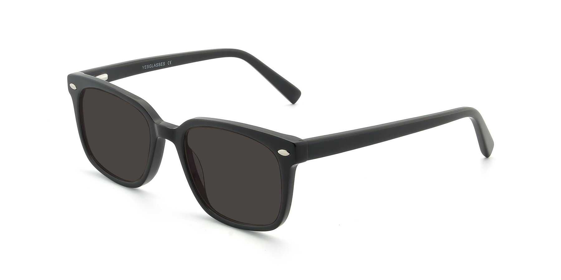 Angle of 17349 in Black with Gray Tinted Lenses