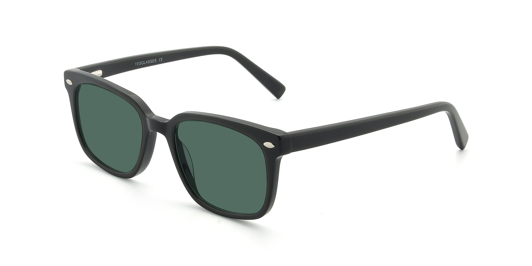 Angle of 17349 in Black with Green Polarized Lenses