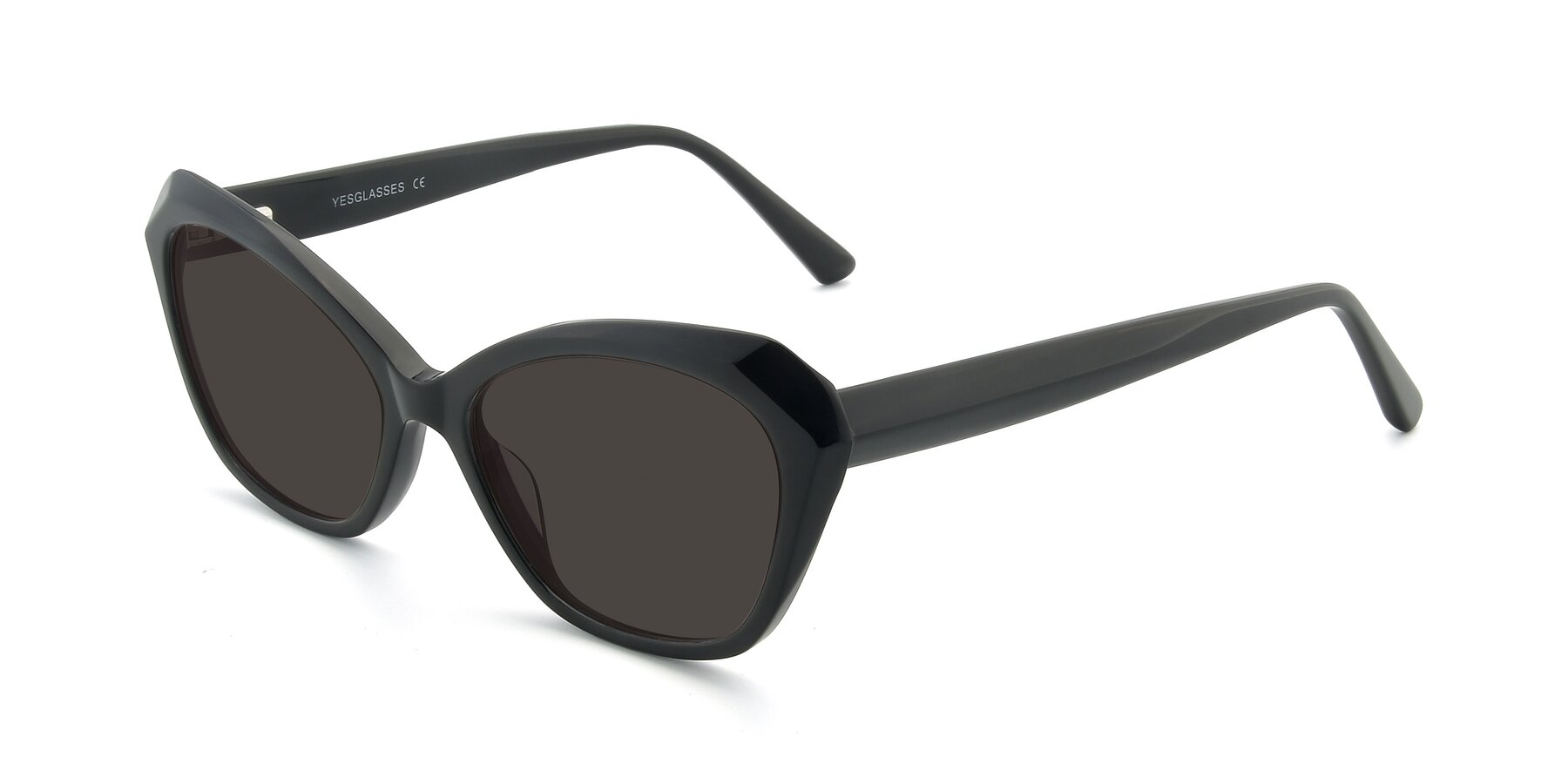 Angle of 17351 in Black with Gray Tinted Lenses