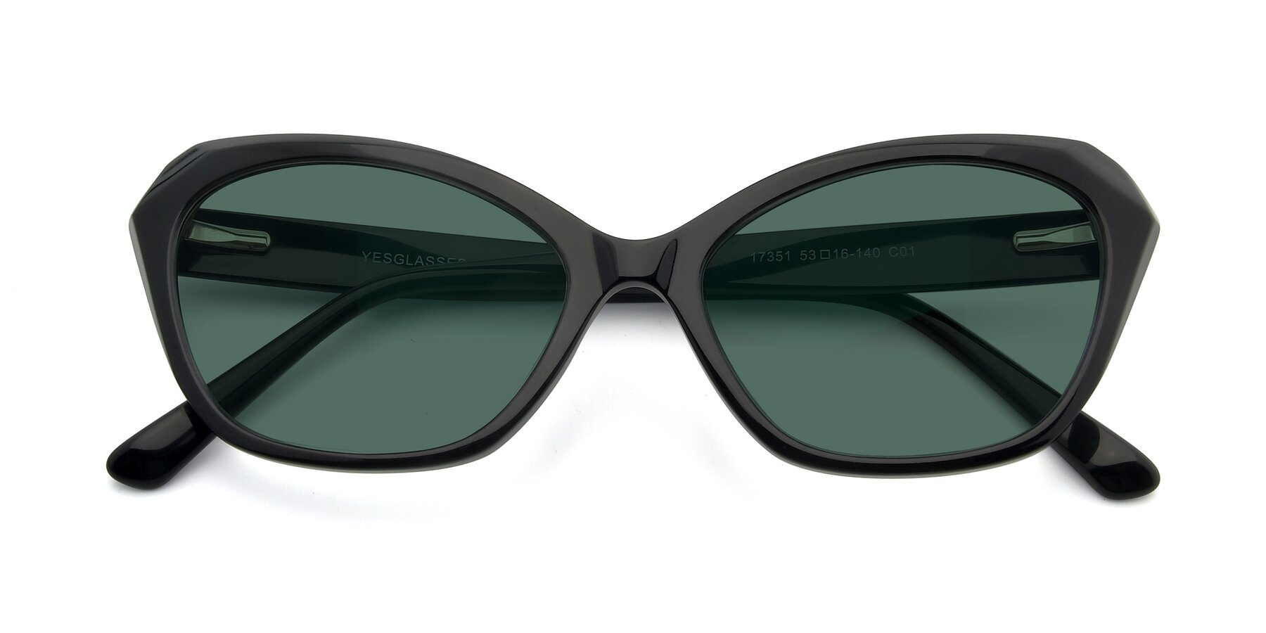 Folded Front of 17351 in Black with Green Polarized Lenses