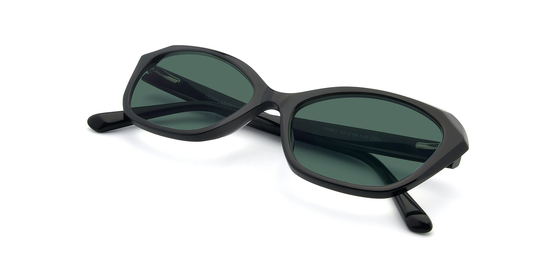 View of 17351 in Black with Green Polarized Lenses