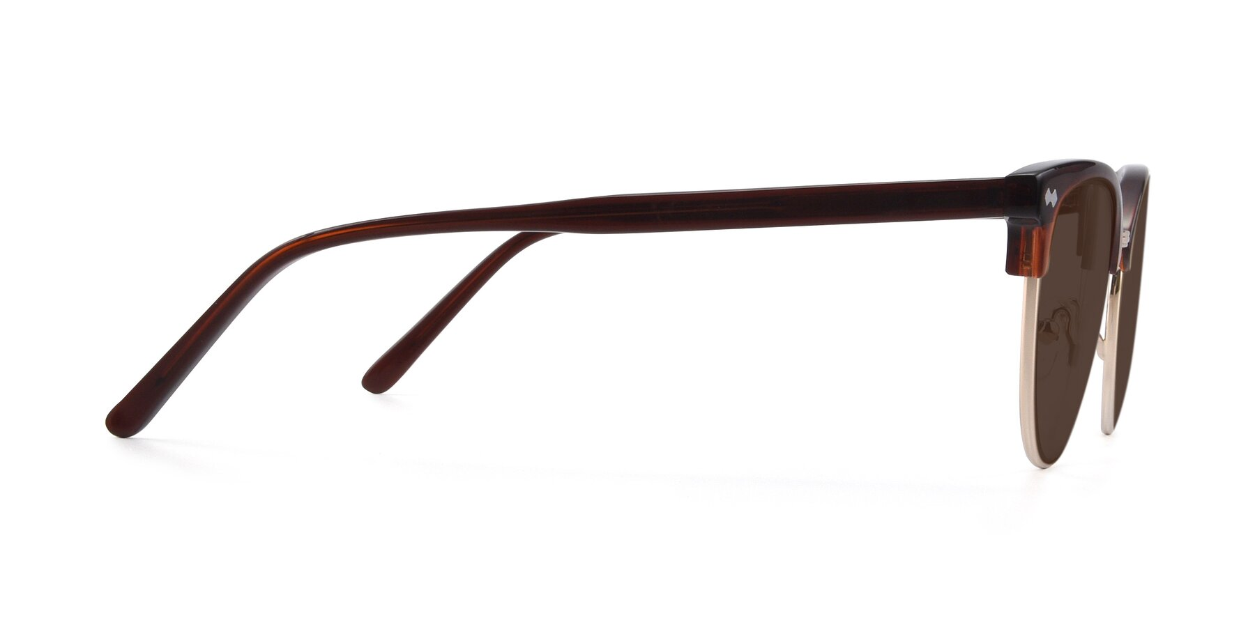 Side of 17461 in Tortoise-Black with Brown Tinted Lenses
