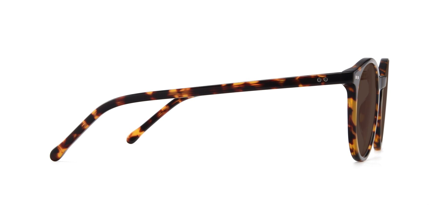 Side of Echo in Tortoise with Brown Tinted Lenses