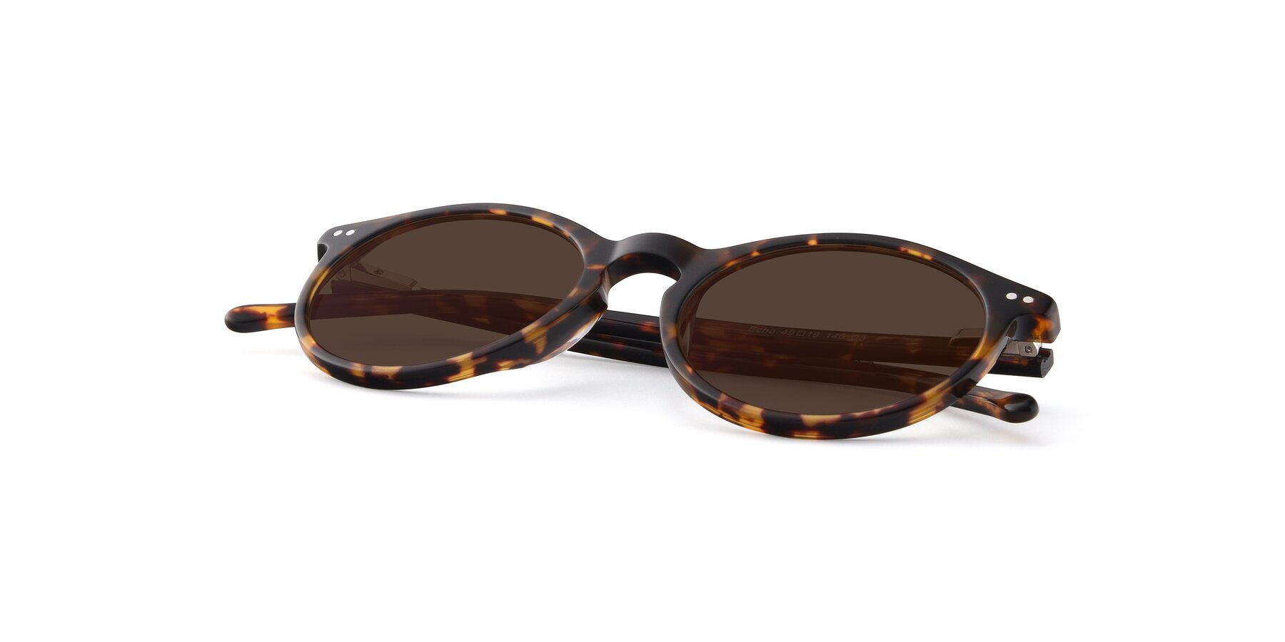 View of Echo in Tortoise with Brown Tinted Lenses