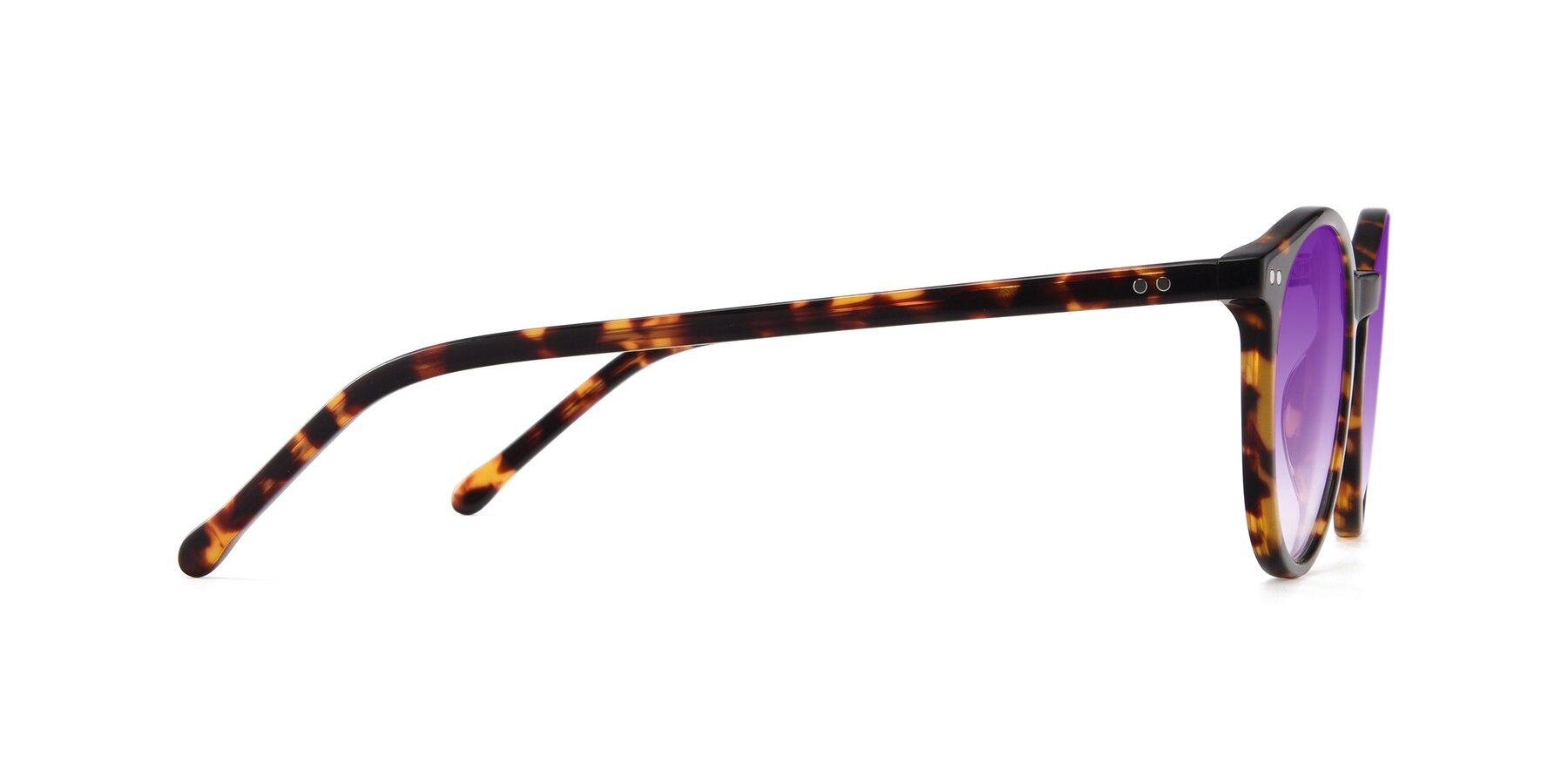 Side of JS9026A in Tortoise with Purple Gradient Lenses