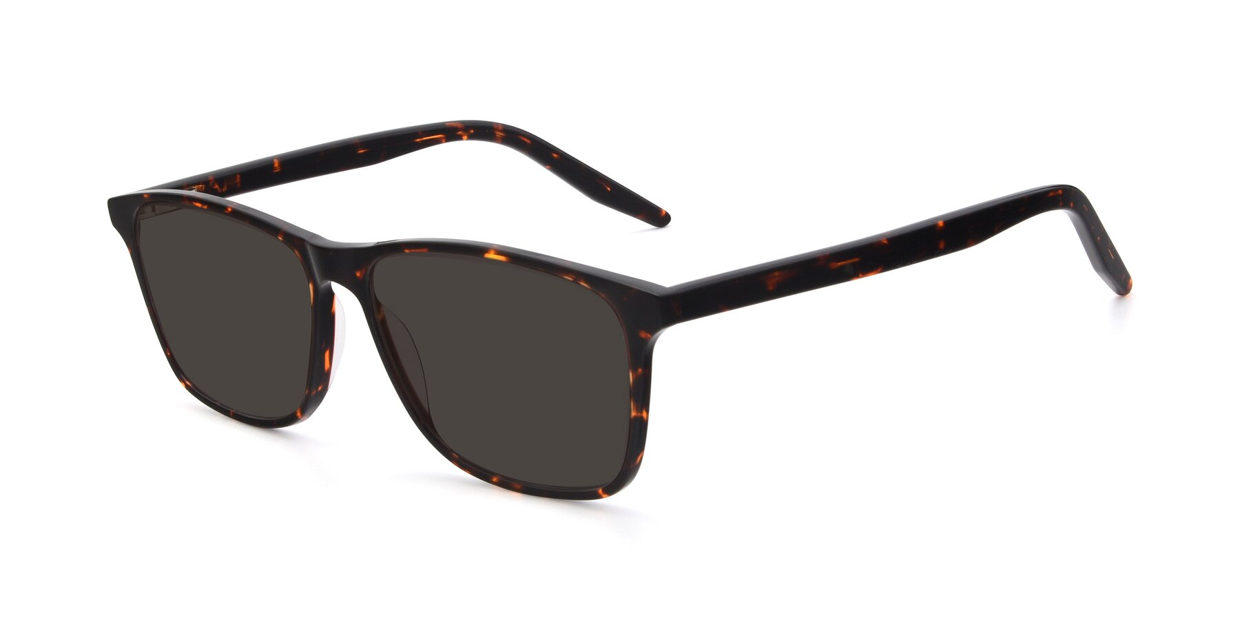 Angle of 17500 in Tortoise with Gray Tinted Lenses
