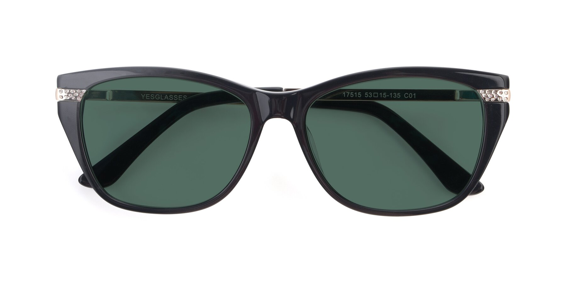 Folded Front of 17515 in Black with Green Polarized Lenses