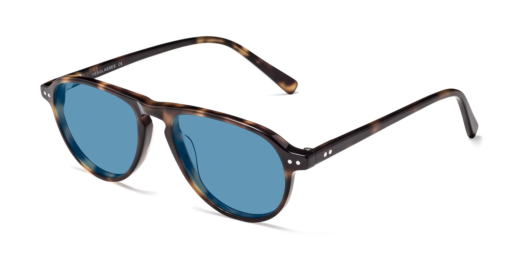 Angle of 17544 in Tortoise with Medium Blue Tinted Lenses