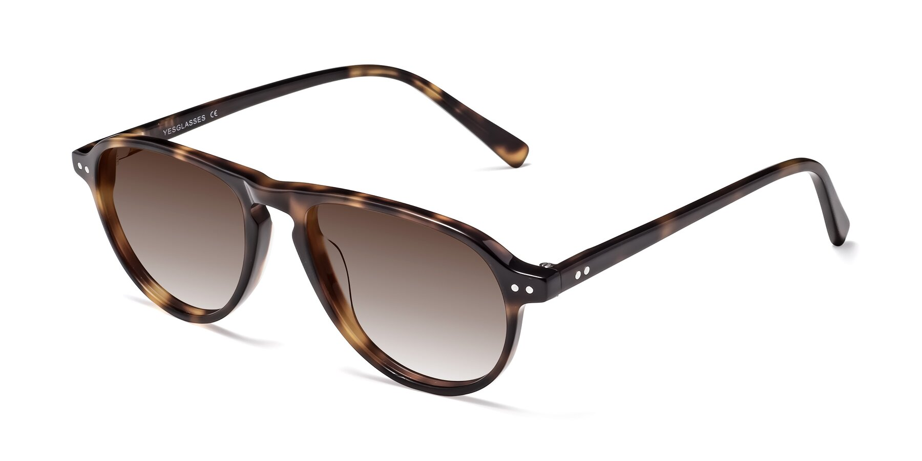 Angle of 17544 in Tortoise with Brown Gradient Lenses