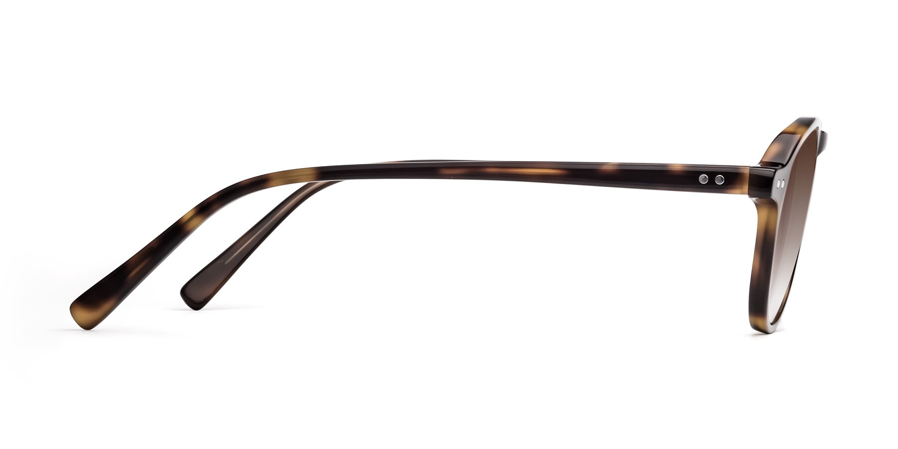 Side of 17544 in Tortoise with Brown Gradient Lenses