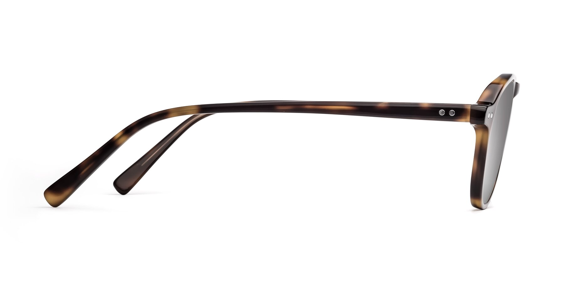 Side of 17544 in Tortoise with Silver Mirrored Lenses