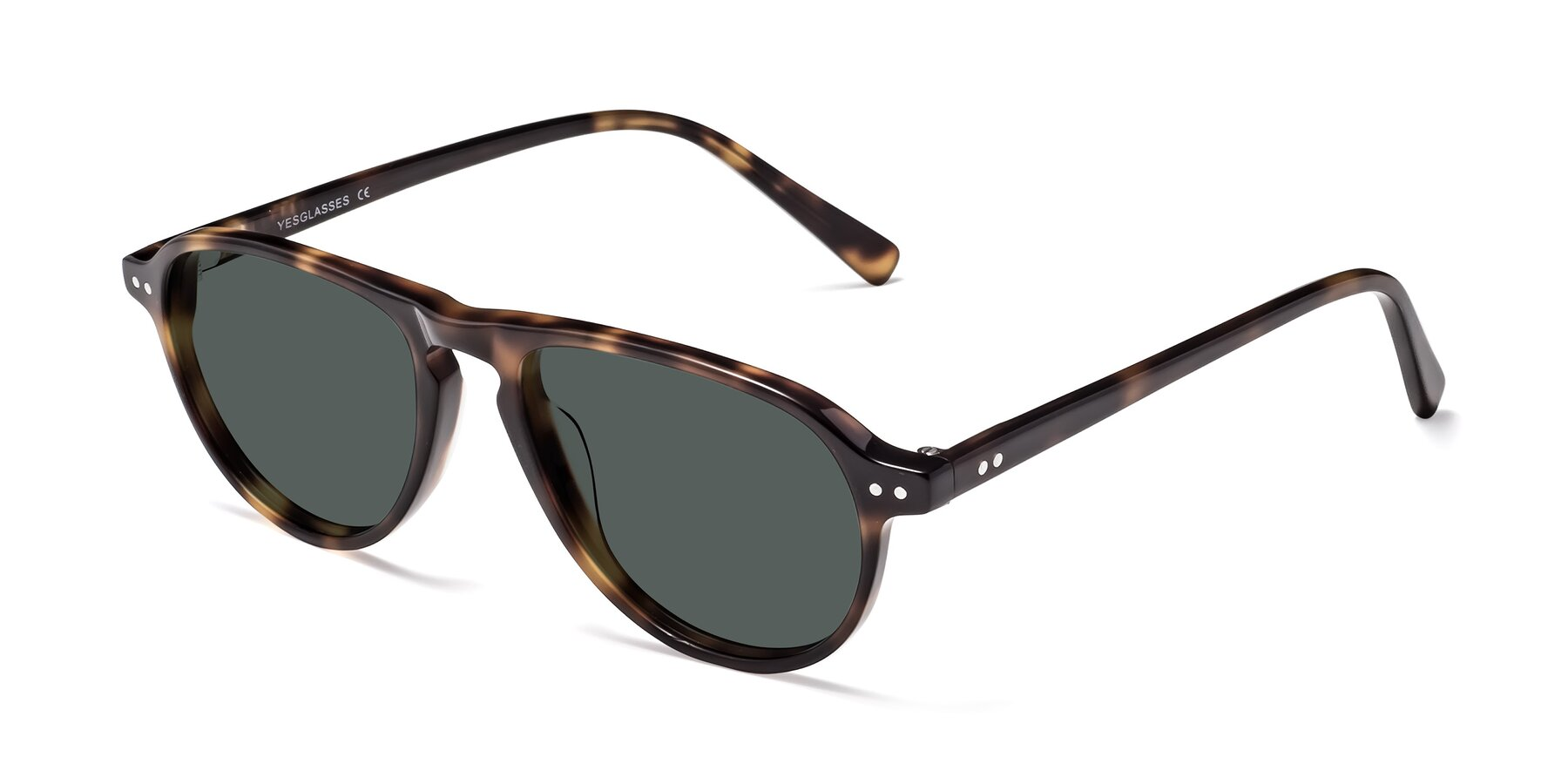 Angle of 17544 in Tortoise with Gray Polarized Lenses