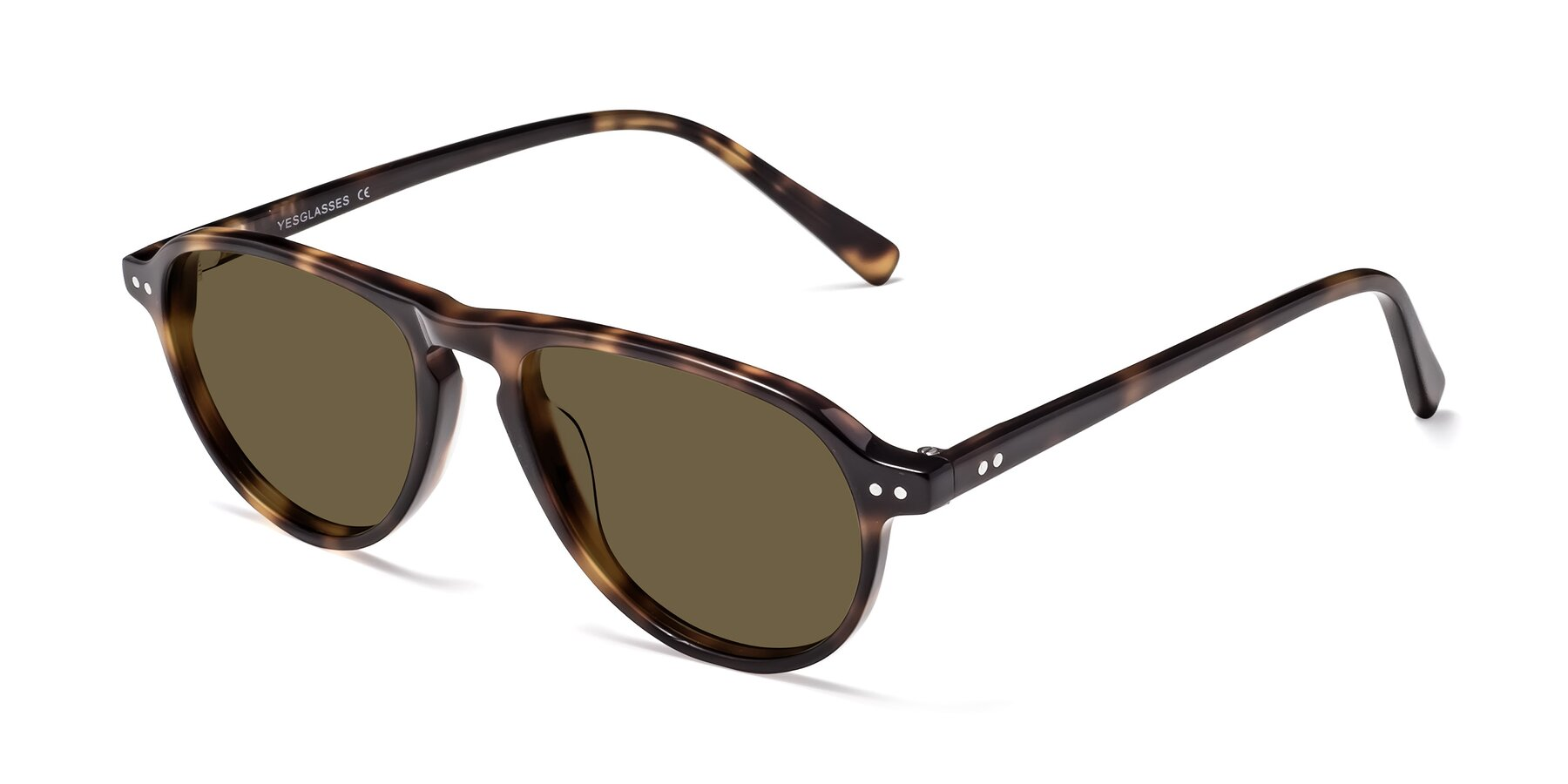 Angle of 17544 in Tortoise with Brown Polarized Lenses