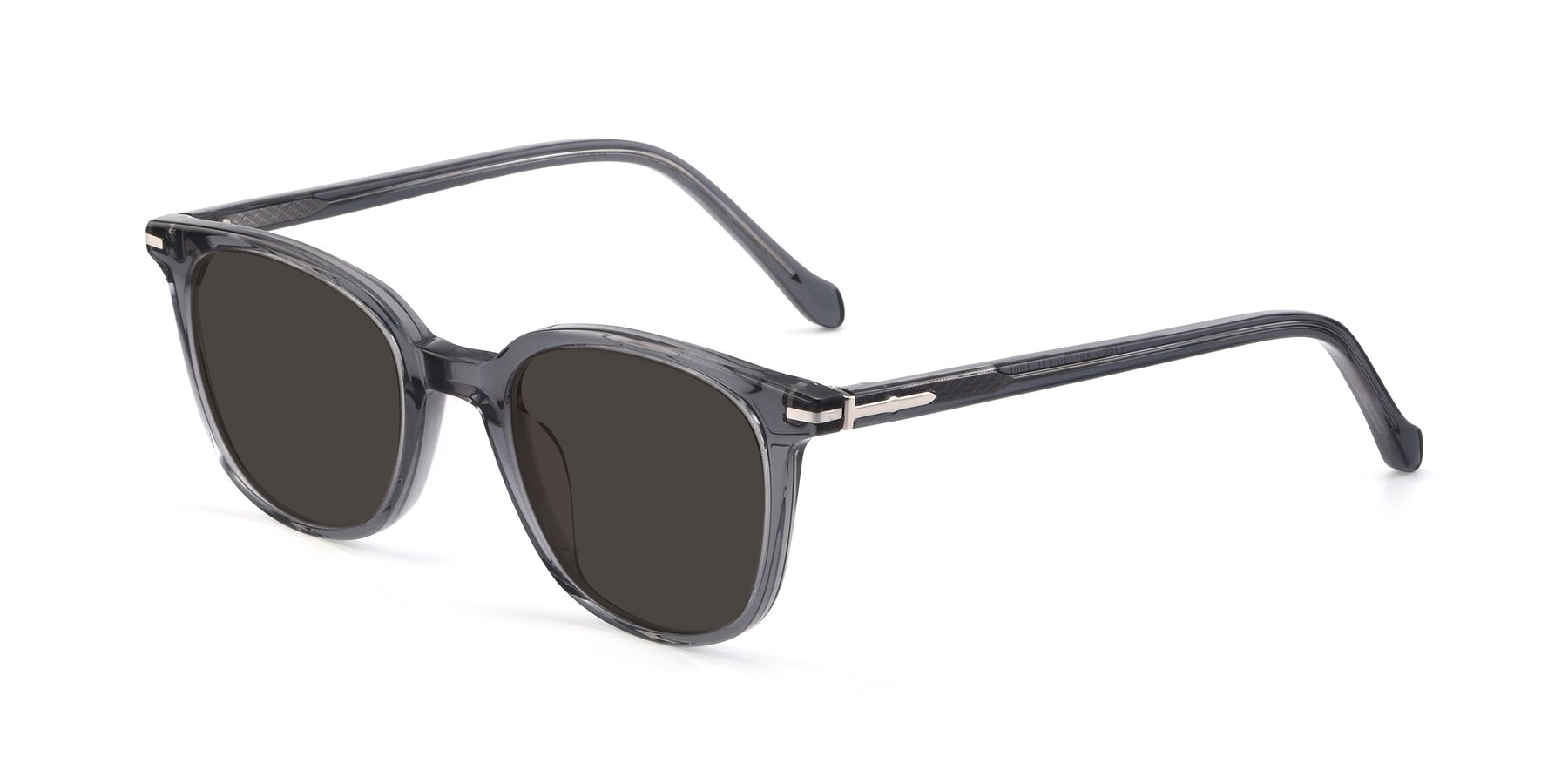 Angle of 17562 in Transparent Grey with Gray Tinted Lenses
