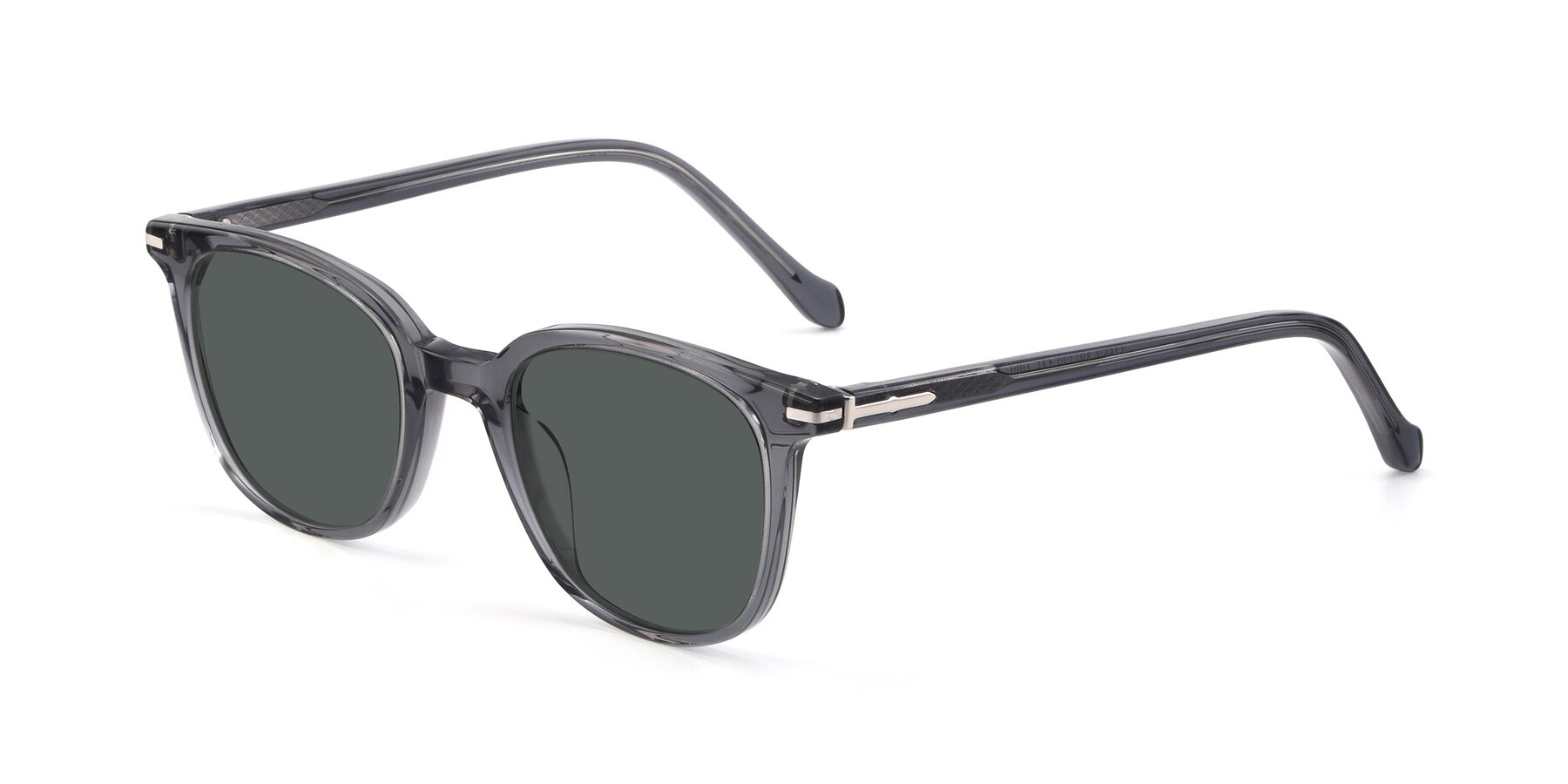 Angle of 17562 in Transparent Grey with Gray Polarized Lenses