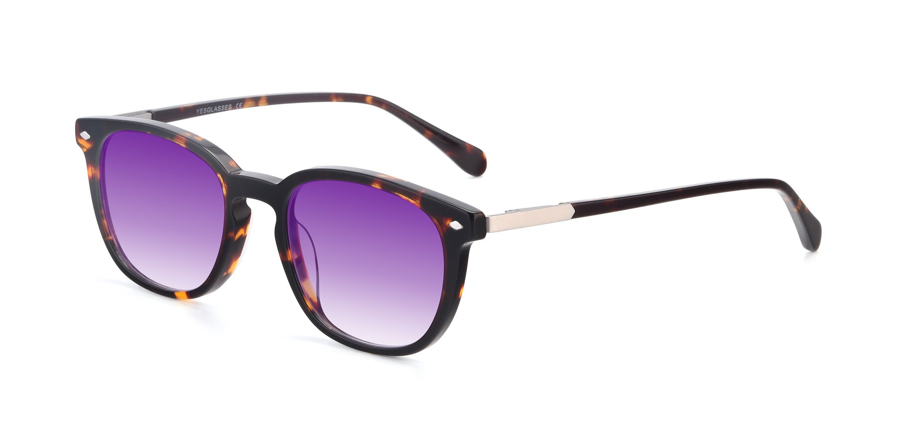 Angle of 17578 in Tortoise with Purple Gradient Lenses