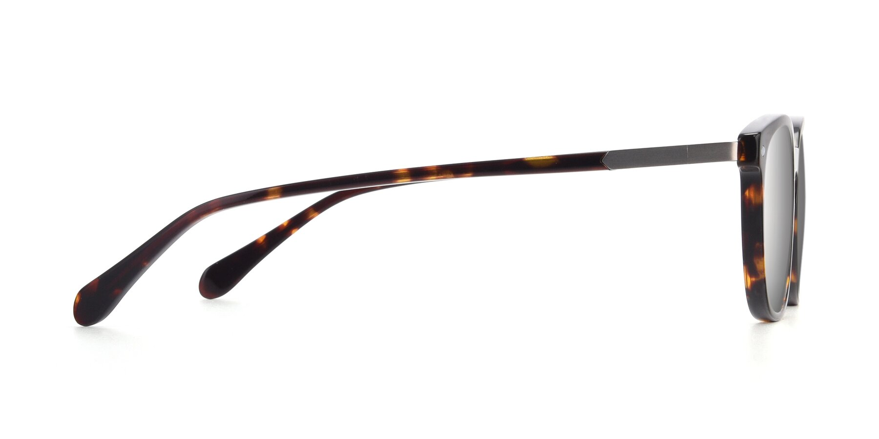 Side of 17578 in Tortoise with Silver Mirrored Lenses