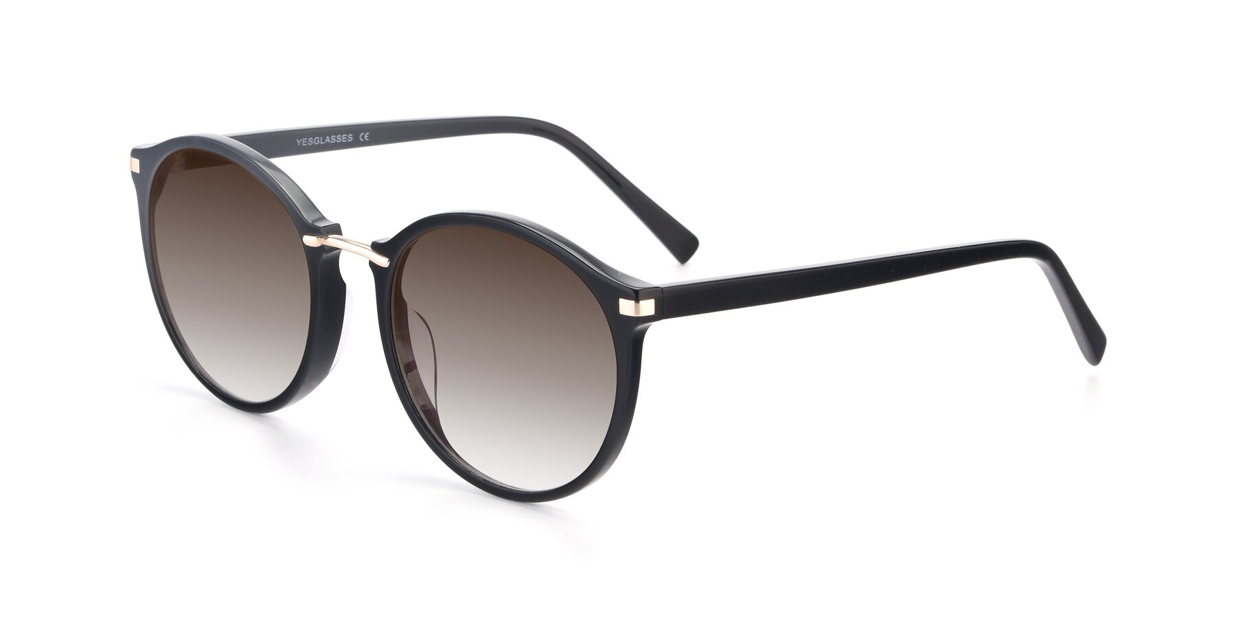 Angle of 17582 in Black with Brown Gradient Lenses