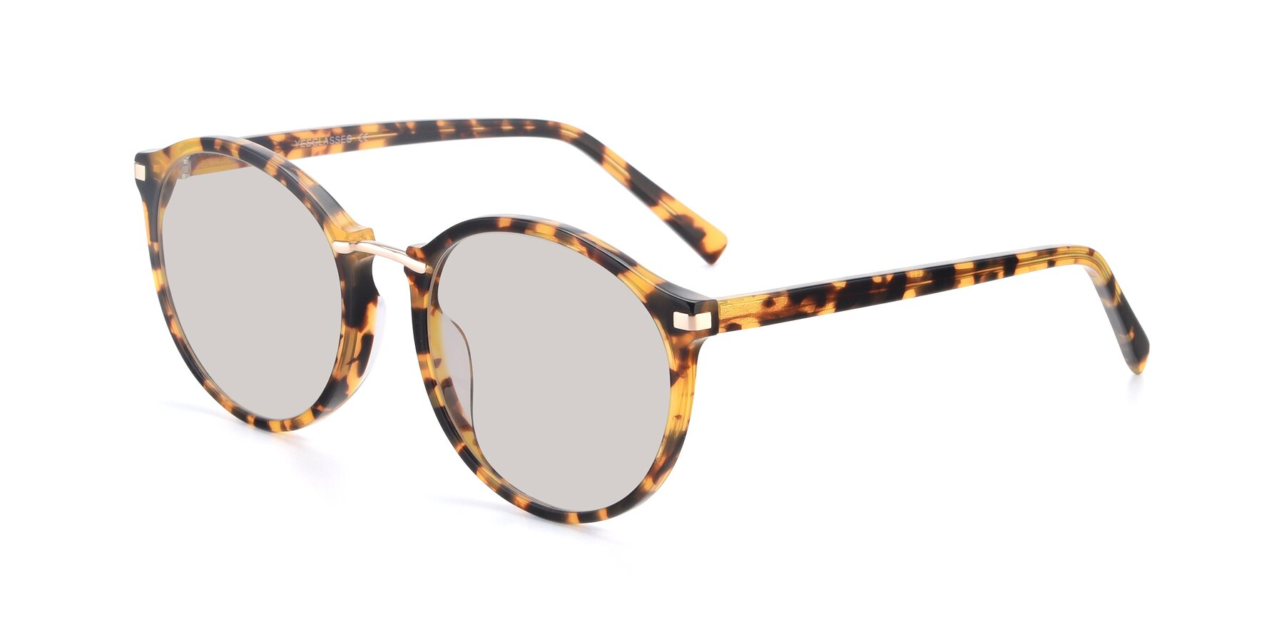 Angle of 17582 in Tortoise with Light Brown Tinted Lenses