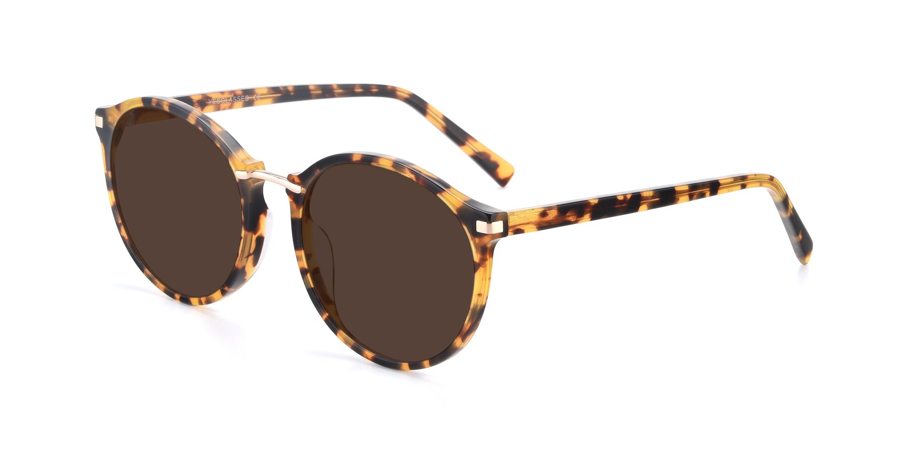 Angle of 17582 in Tortoise with Brown Tinted Lenses