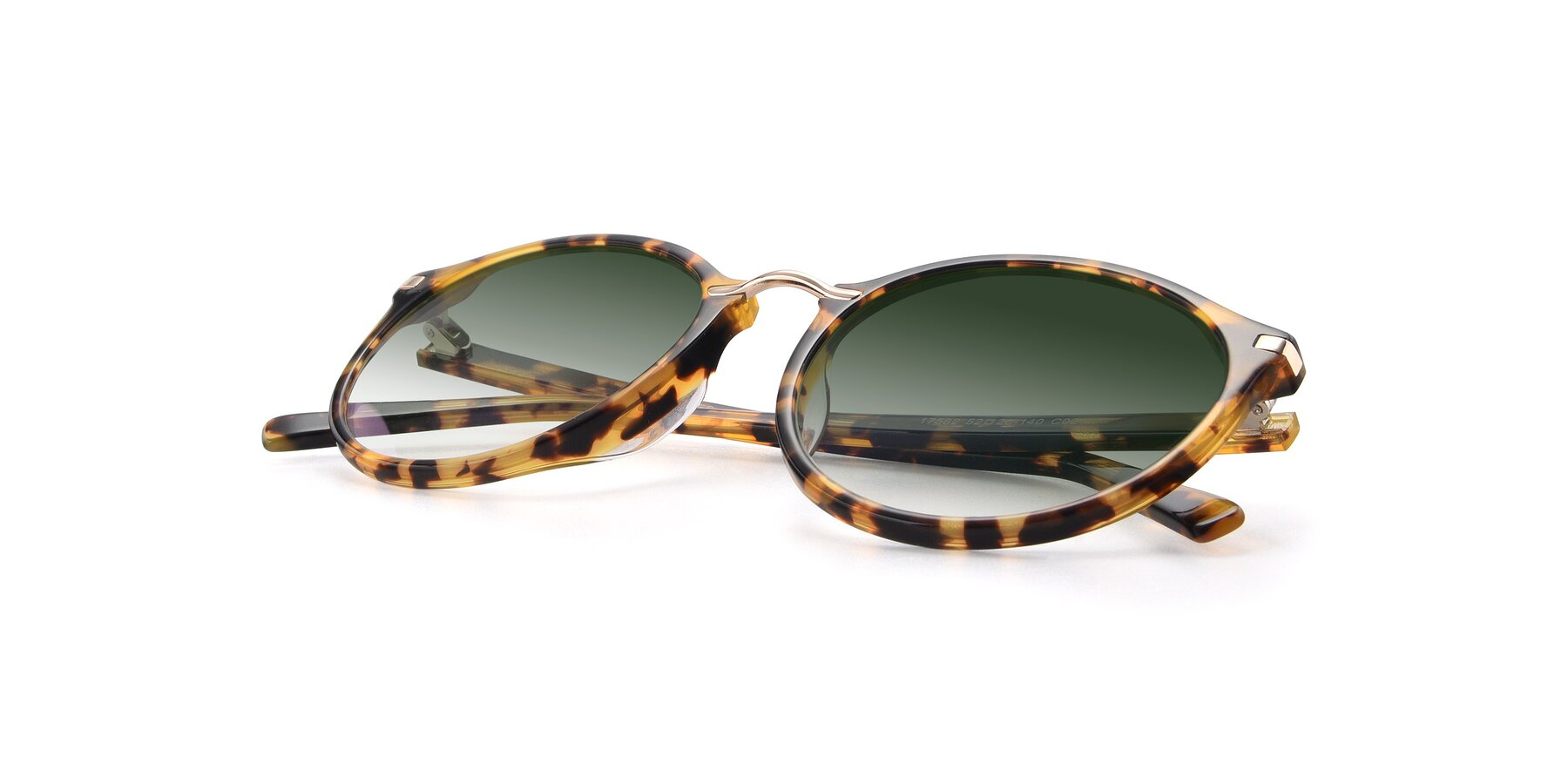 View of 17582 in Tortoise with Green Gradient Lenses