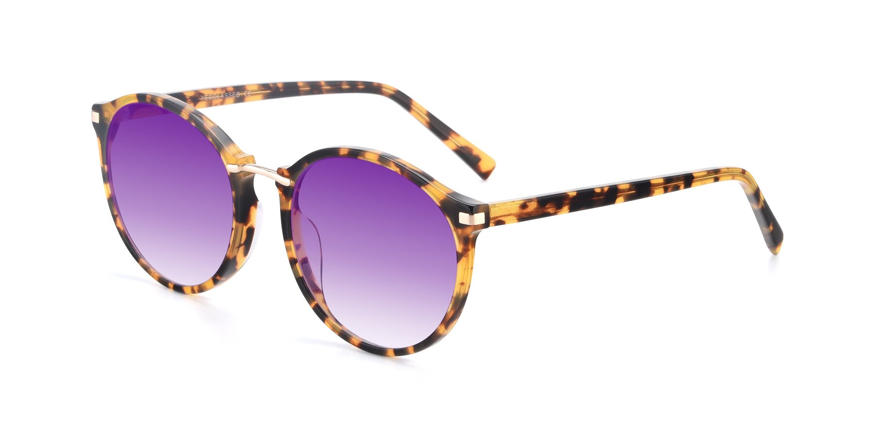 Angle of 17582 in Tortoise with Purple Gradient Lenses