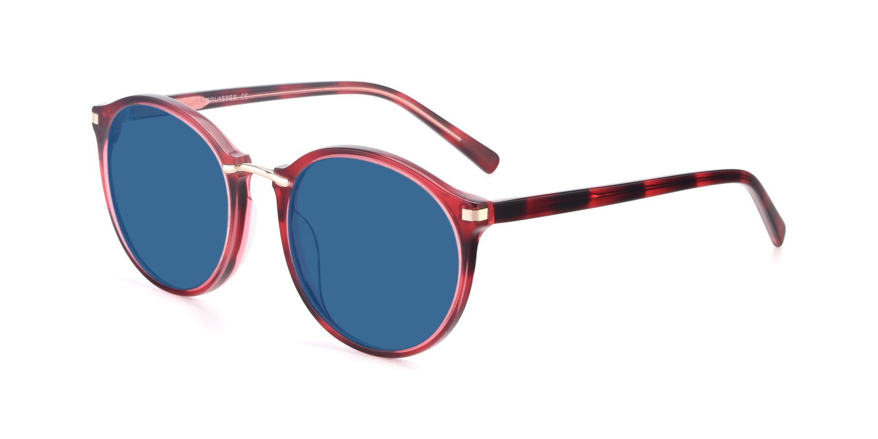Angle of 17582 in Wine with Blue Tinted Lenses