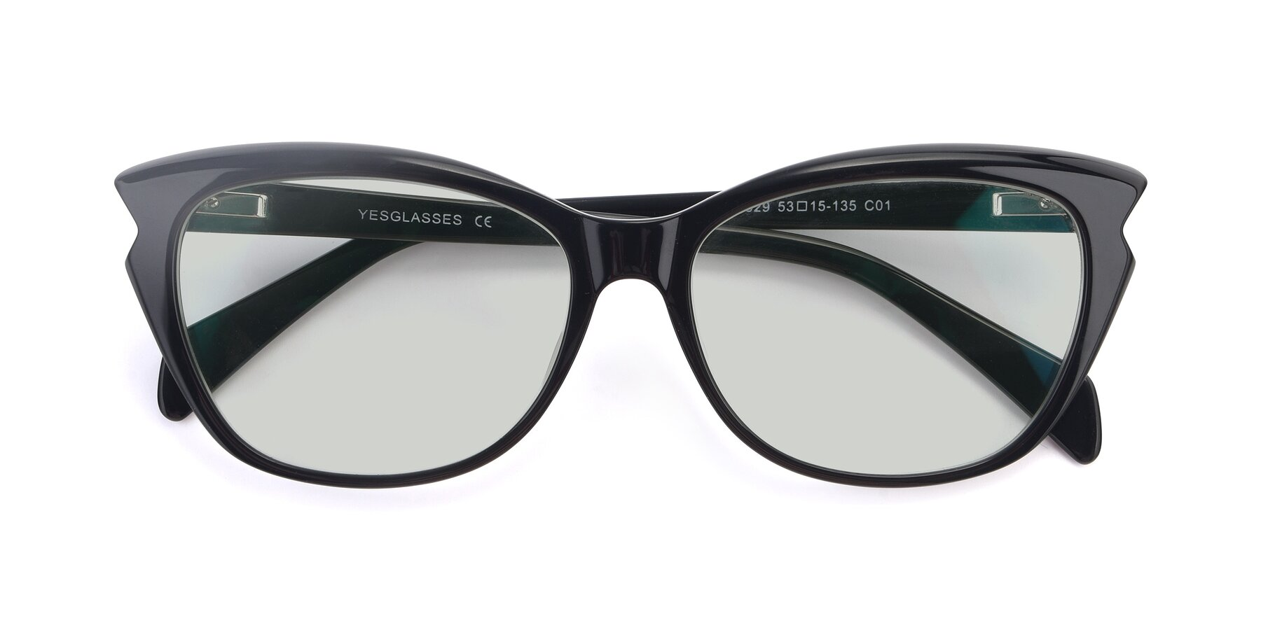 Folded Front of 17629 in Black with Light Green Tinted Lenses