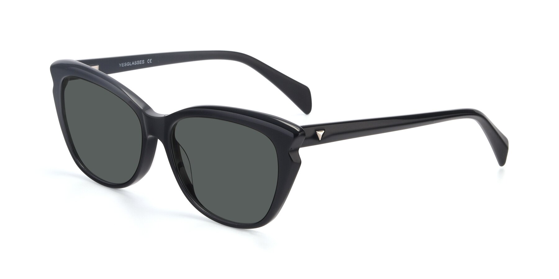 Angle of 17629 in Black with Gray Polarized Lenses