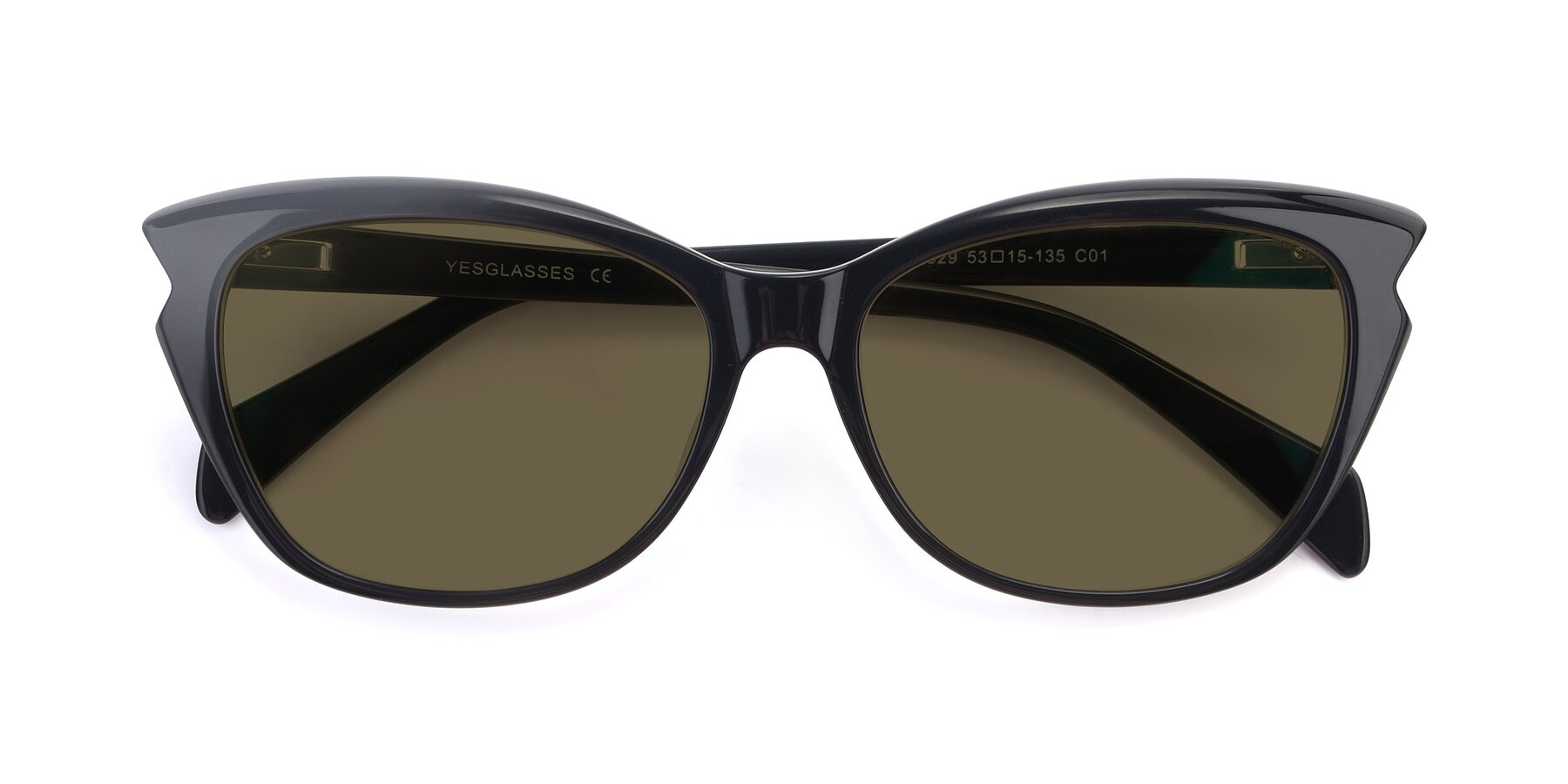 Folded Front of 17629 in Black with Brown Polarized Lenses