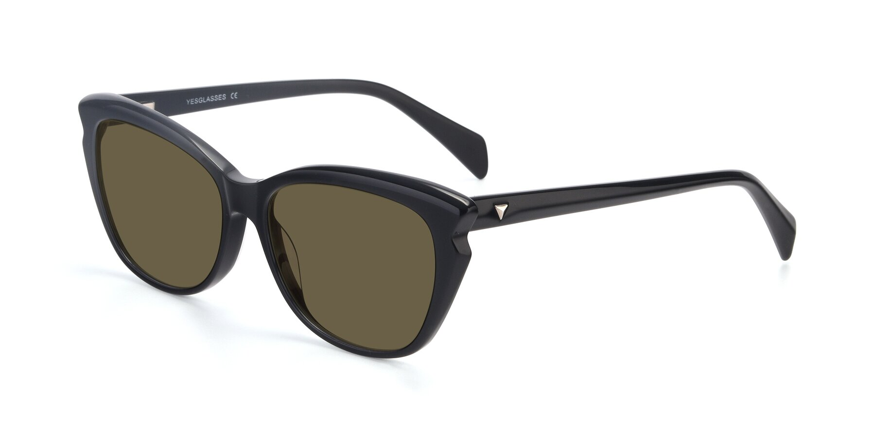 Angle of 17629 in Black with Brown Polarized Lenses