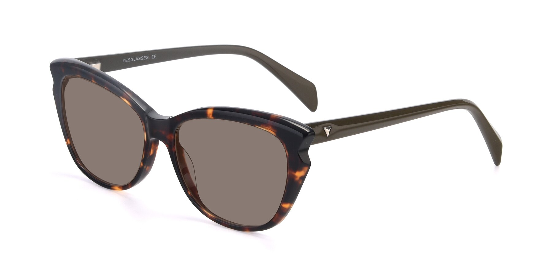Angle of 17629 in Tortoise with Medium Brown Tinted Lenses