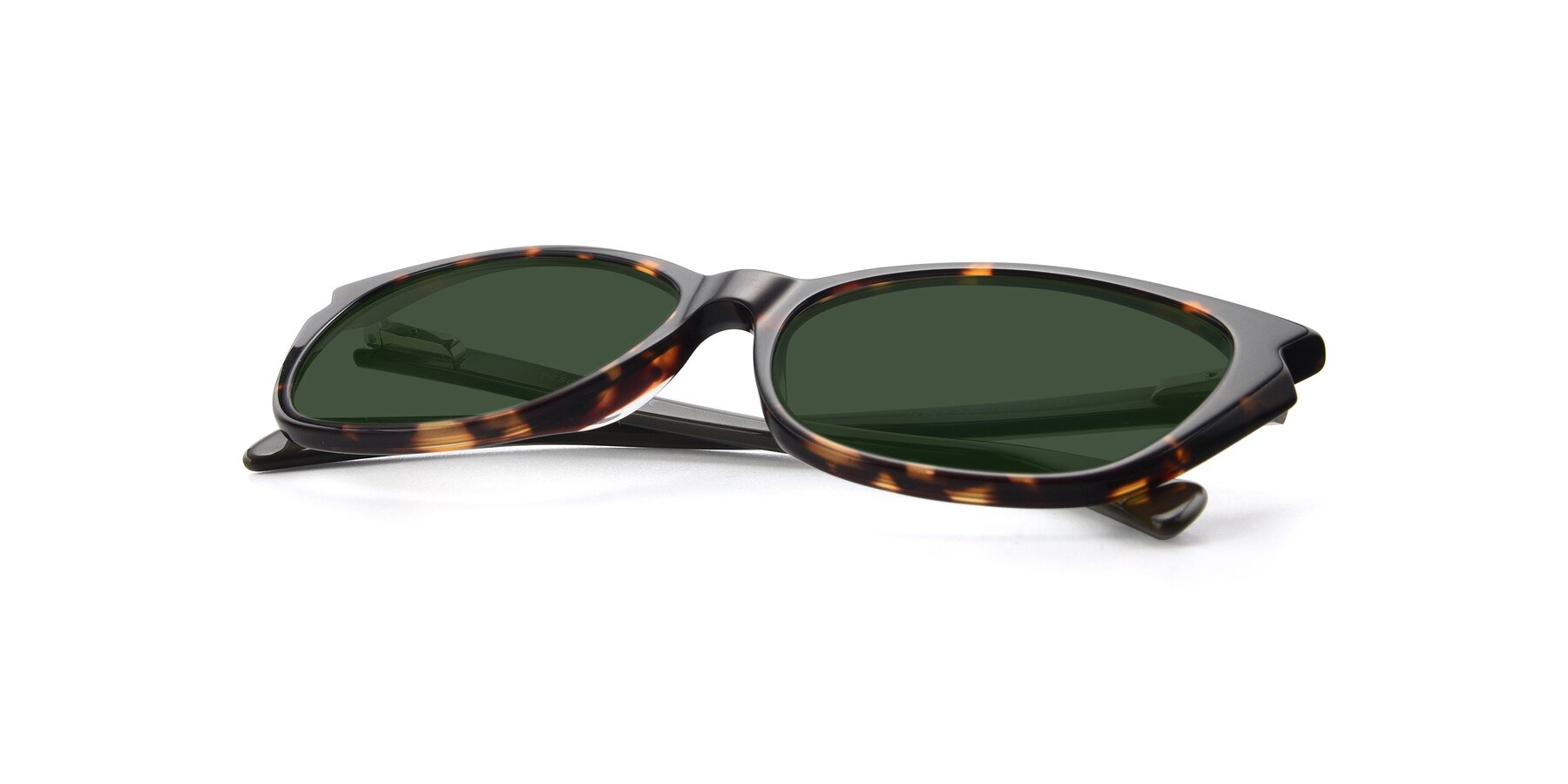 View of 17629 in Tortoise with Green Tinted Lenses