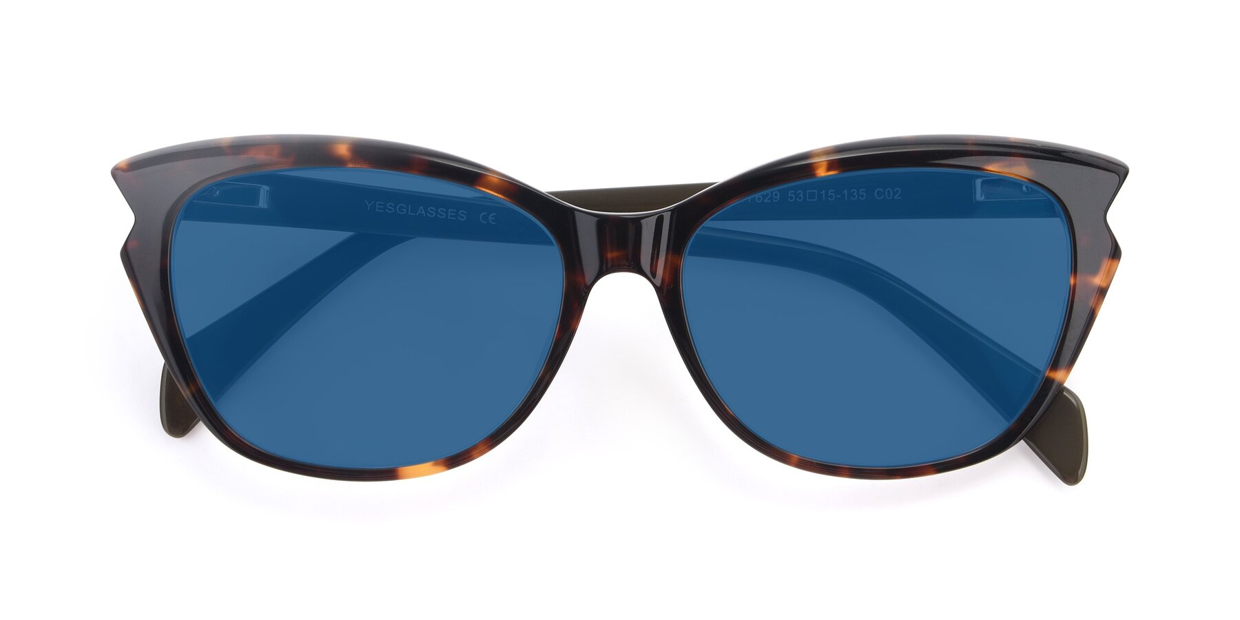 Folded Front of 17629 in Tortoise with Blue Tinted Lenses