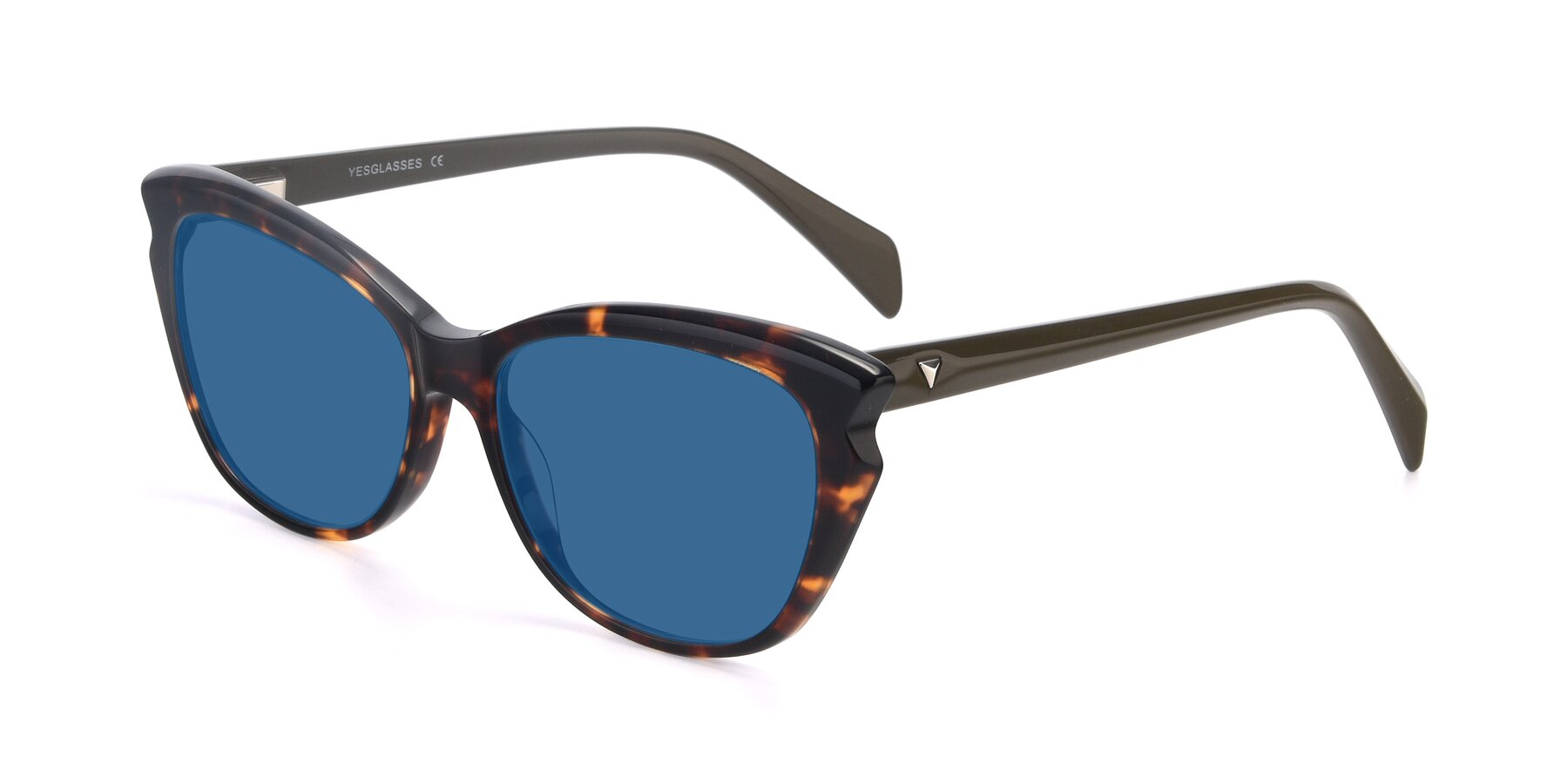 Angle of 17629 in Tortoise with Blue Tinted Lenses